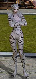 Храбрый тигр в aion