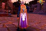 так выглядит в игре аллоды гильдейская накидка на персонаже
