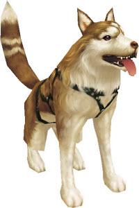 Новый питомец в кабал онлайн – собака хаски