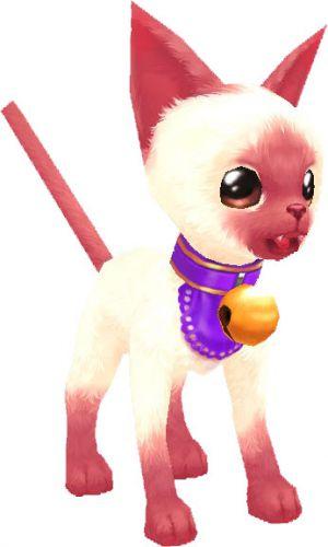 Тот самый котенок из кабала онлайн
